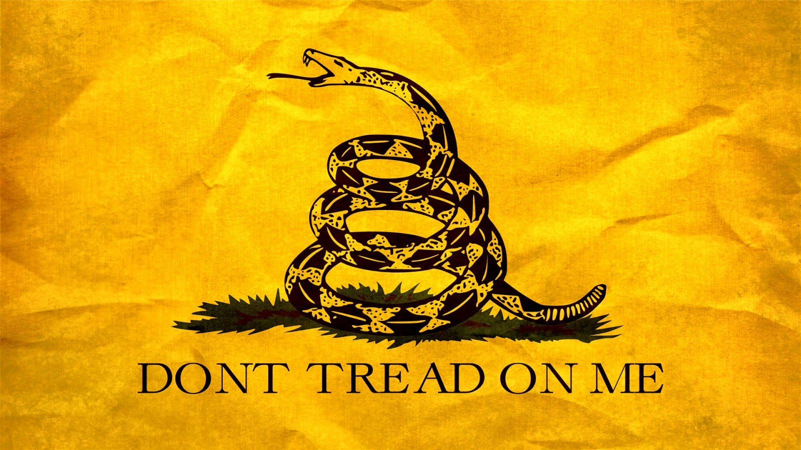 Don T Tread On Me Wallpaper